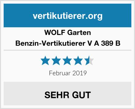 WOLF Garten Benzin-Vertikutierer V A 389 B Test