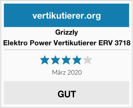 Grizzly Elektro Power Vertikutierer ERV 3718 Test